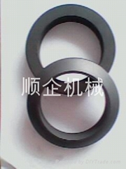 PTS石墨環