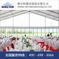 shelter15米婚礼婚庆篷
