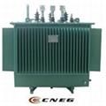 油浸式電力變壓器