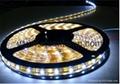 LED燈條LED燈串IP45防水SMD5050白光 4