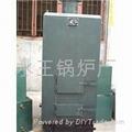 节能锅炉 4