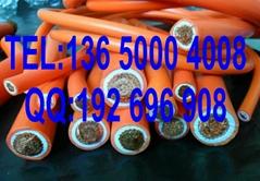 耐酸碱性防油火牛線10mm2