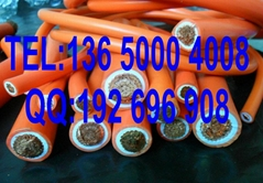 耐酸碱性防油火牛线10mm2