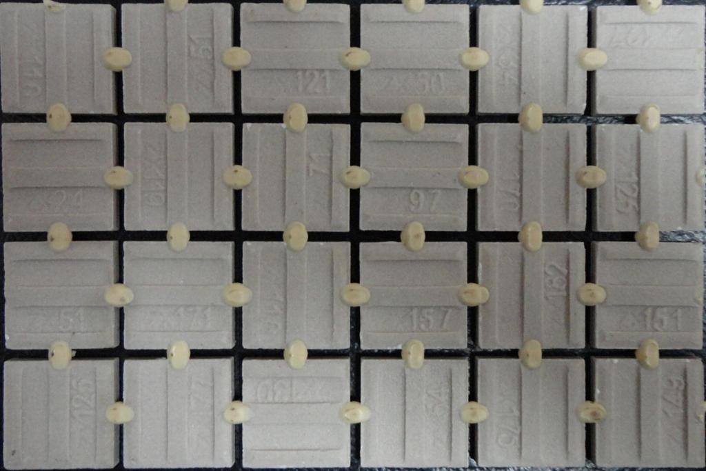 外牆磚點膠膠粘劑 3