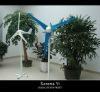 200W wind turbine