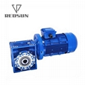 RV gearbox reducer with motor output hollow shaft