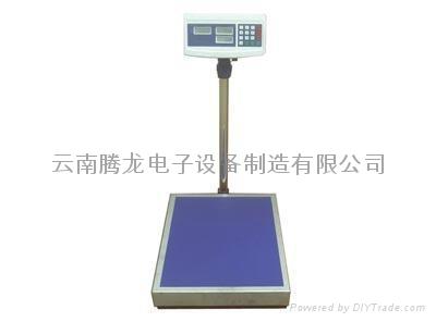 电子台秤 5