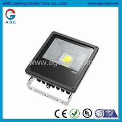 AC85-277V.IP65,尺寸215x178x81mm.30W LED 投光燈