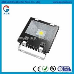 AC85-277V.IP65,尺寸259x250x93mm.70W LED 投光燈