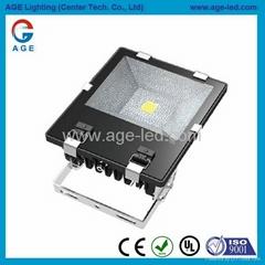 AC85-277V.IP65,尺寸259x250x93mm.100W LED 投光燈