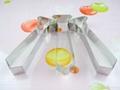 食品級不鏽鋼水果切模 4