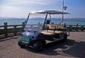 六座高尔夫观光车 4