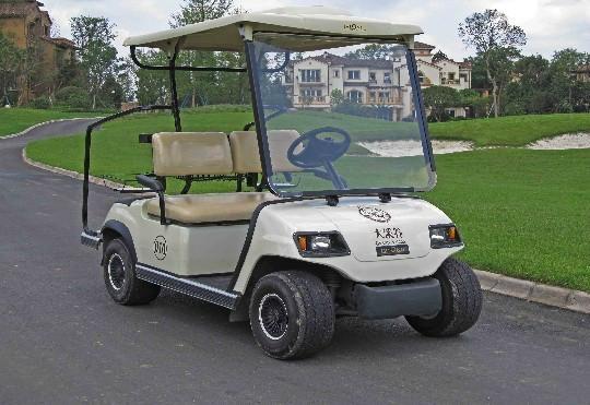 兩座電動高爾夫球車 1