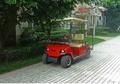 兩座電動高爾夫球車 2