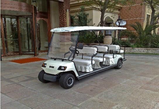 成都十一座电动高尔夫球车 1