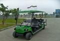 成都十一座电动高尔夫球车 2