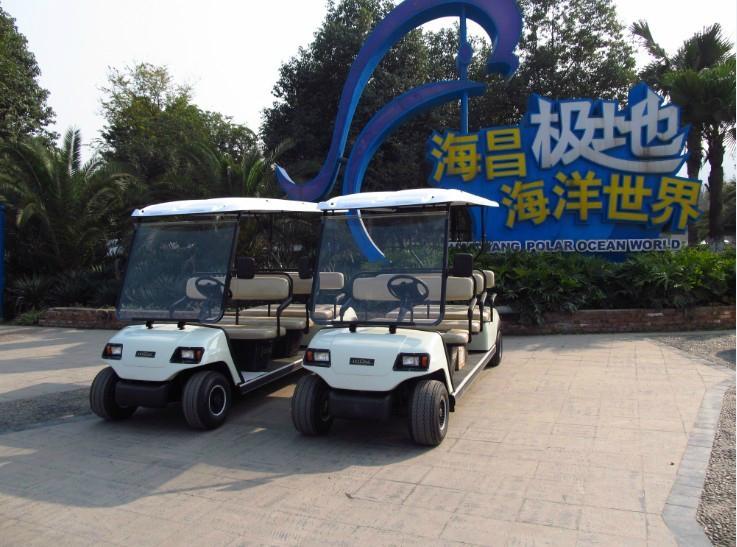 成都十一座电动高尔夫球车 3