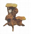 Handly Carved Fir  Root Wood  Flower Stand 4