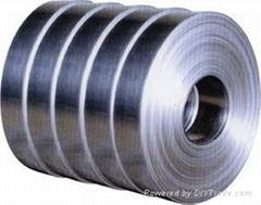 各種型號不鏽鋼帶材