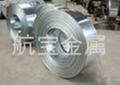 各种型号不锈钢带材 4