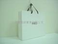 Mat laminated art paper bag