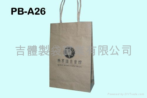 Kraft paper bag with paper twisted handle
