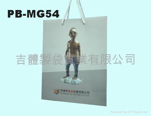 Gloss laminated art paper bag(Varnish)