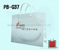 Luxury Gloss laminated art paper bag