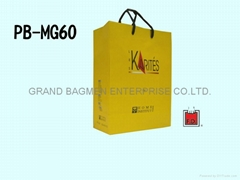 Mat laminated art paper bag