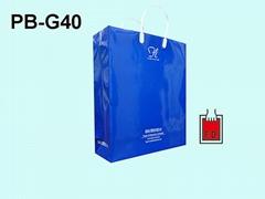Luxury Gloss laminated art paper bag