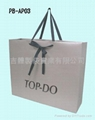 High Class Art Paper Bag