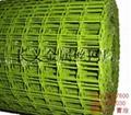 镀锌电焊网 3