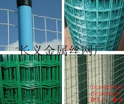 镀锌电焊网 4