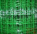镀锌电焊网 5
