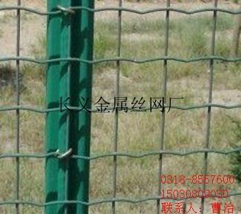 窗户护栏网 1