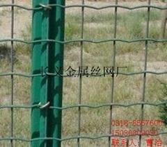 窗户护栏网