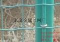 大丝电焊网 4