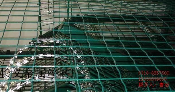 大丝电焊网 5