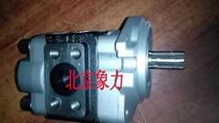 現代叉車配件 液壓油泵