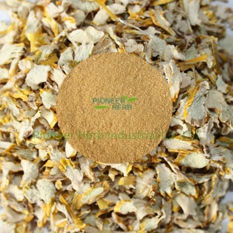 Dendrobium extract,Dendrobium nobile extract powder 1