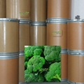 Glucoraphanin Broccoli  extract