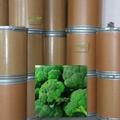 Glucoraphanin Broccoli  extract