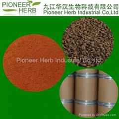 BLACK TEA EXTRACT theaflavins tea polyphenols