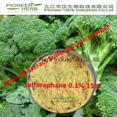 Broccoli Seeds Extract Sulforaphane