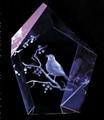 3D激光內雕水晶工藝品,水晶獎牌,水晶方體 17