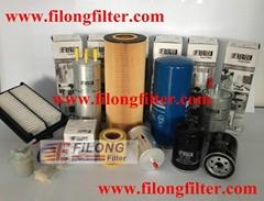 FILONG ( China ) Automotive Group Limited