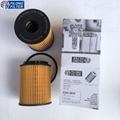 FILONG Manufactory FILONG Oil Filters 73500049 5650342 HU713/1X OX371D E60HD110 CH9713ECO  FILONG FOH-2010 For FIAT