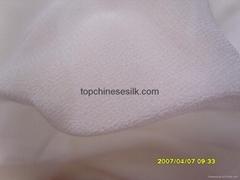 Silk georgette 10101