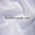 Silk georgette 10102