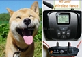 AT-216F Dog/Cat Wireless Fence with LCD display rechargeable and waterproof 2